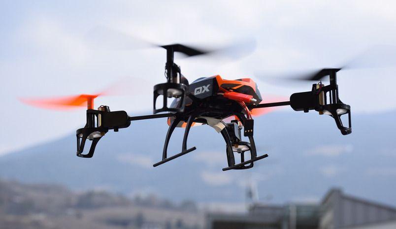 Entrenar águilas para eliminar drones peligrosos