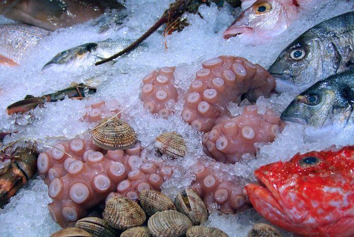 2016-03-25 La zona de penumbra oceánica podría alimentar al mundo