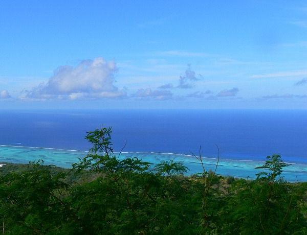 2016-08-27 Estados Unidos crea la mayor región marina protegida del planeta