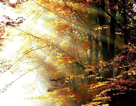 Vertumnus el otoño