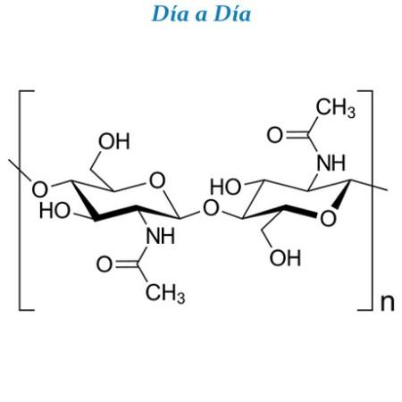20 usos para un mismo compuesto: la quitina - DiarioE